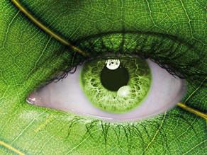 A visão de uma genYs sobre sustentabilidade.