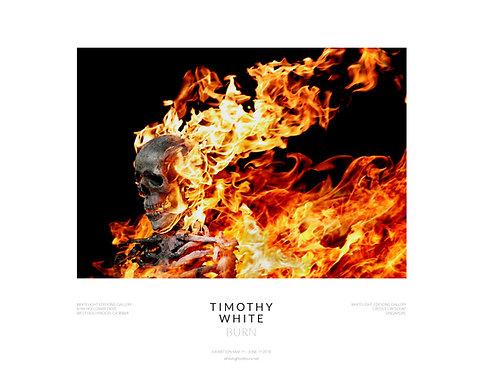 Burning Skull Poster by Timothy White