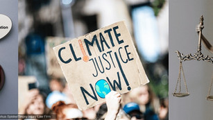 Climate  litigation as a tool to tackle global warming