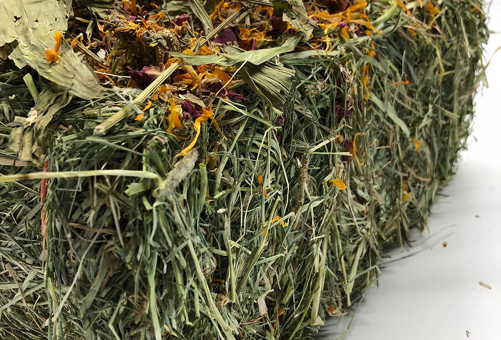 Micro Timothy & Rye Grass Blended Bale Infused with Dried Herbs & Wild Flowers