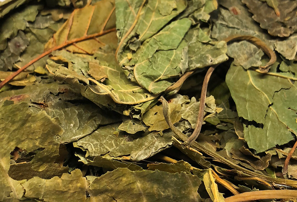 Mulberry Leaf (100g)