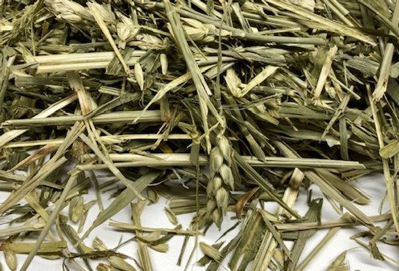 Green Wheat (100g)