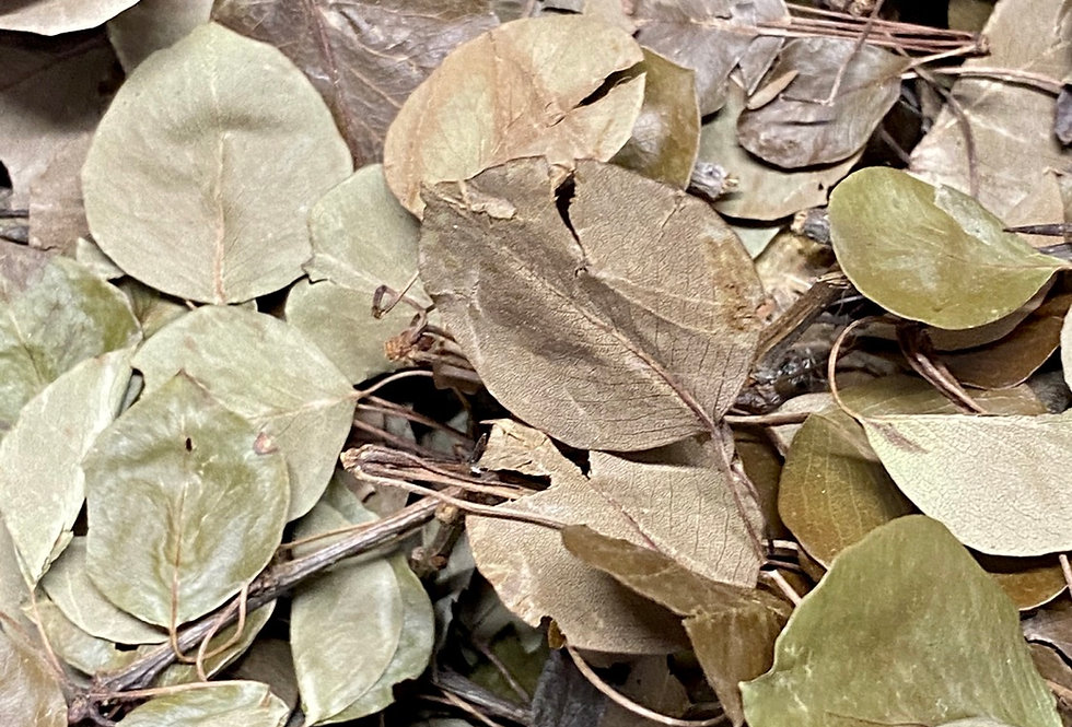 Pear Leaves (100g)
