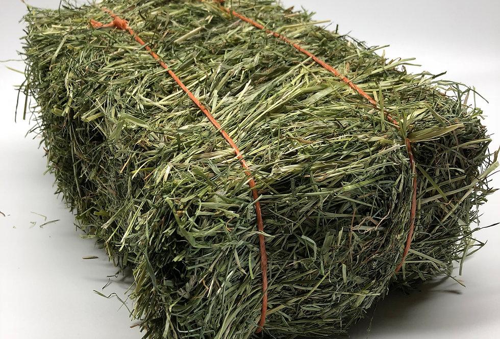 X2 Micro Meadow & Timothy Hay Bale & X2 Micro Timothy & Rye Grass Hay Bale