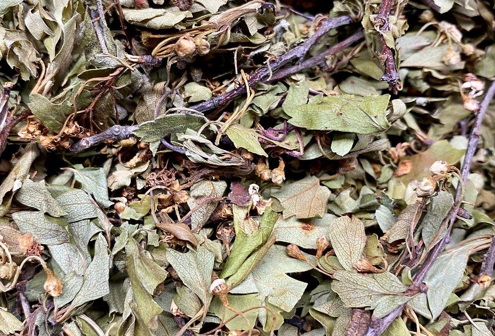 Whole Hawthorne Leaves & Flowers (100g)
