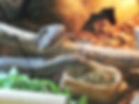 Sudan plated Lizard eating herbmix.jpg