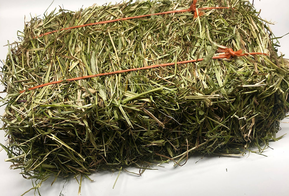 Micro Timothy & Rye Grass Blended Hay Bale