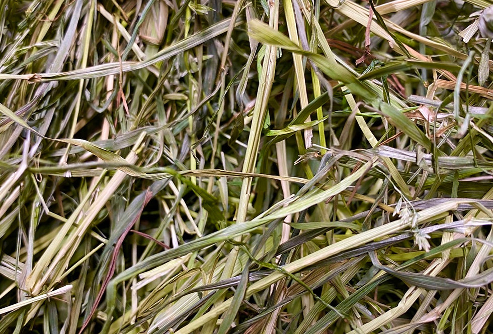 Meadow & Timothy Blended Hay Sample