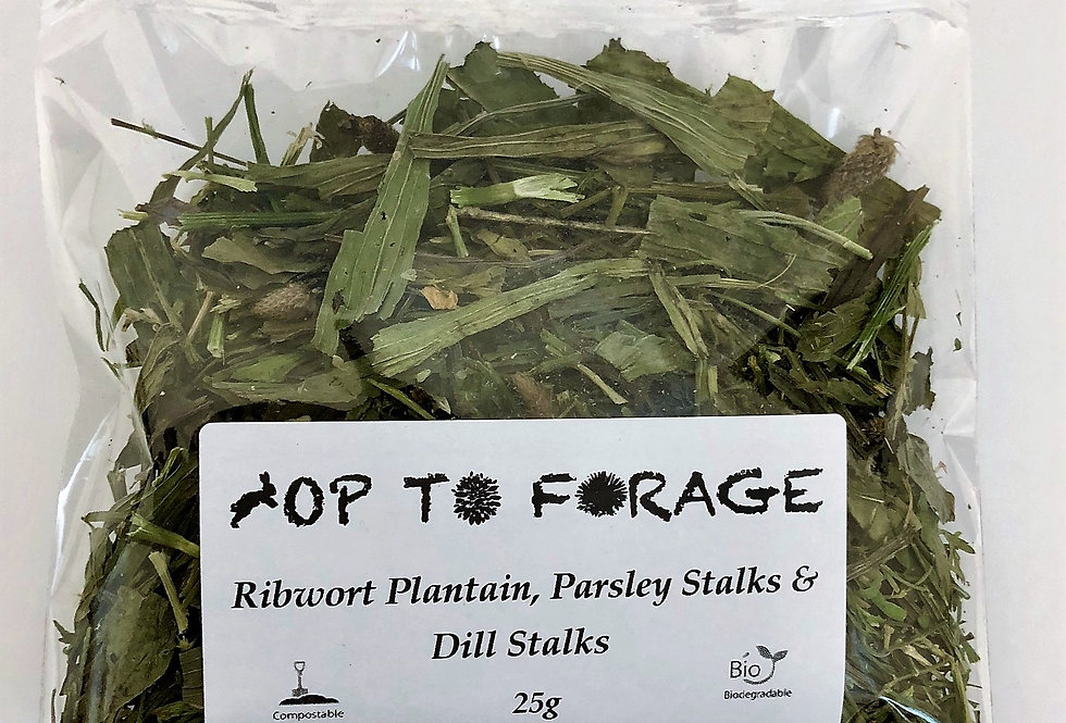 Ribwort Plantain, Parsley Stalks & Dill Stalks (25g)