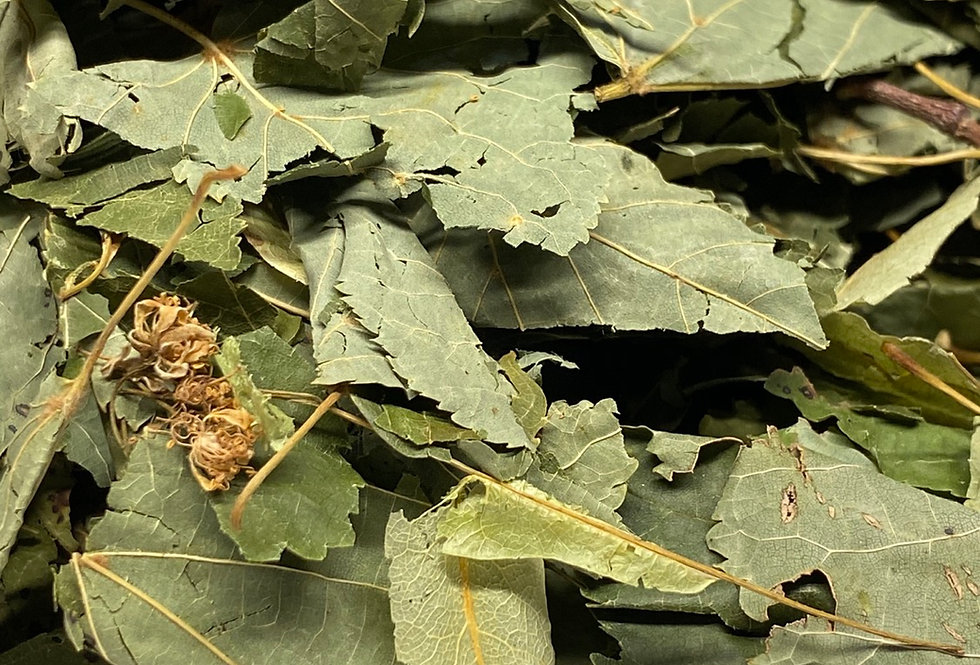 Whole Linden Leaves (100g)