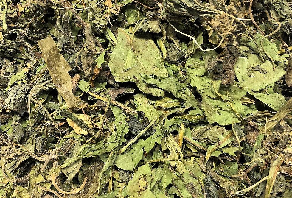Ribwort Plantain, Dandelion Leaf & Nettle Leaf (100g)