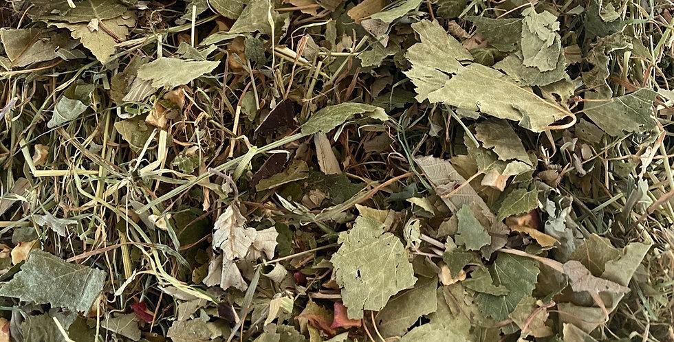 Blackberry Leaf, Birch Leaf & Dried Apple Hay Blend (100g)