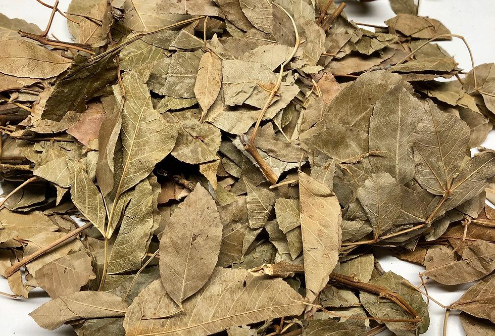 Whole Ash Leaves (100g)