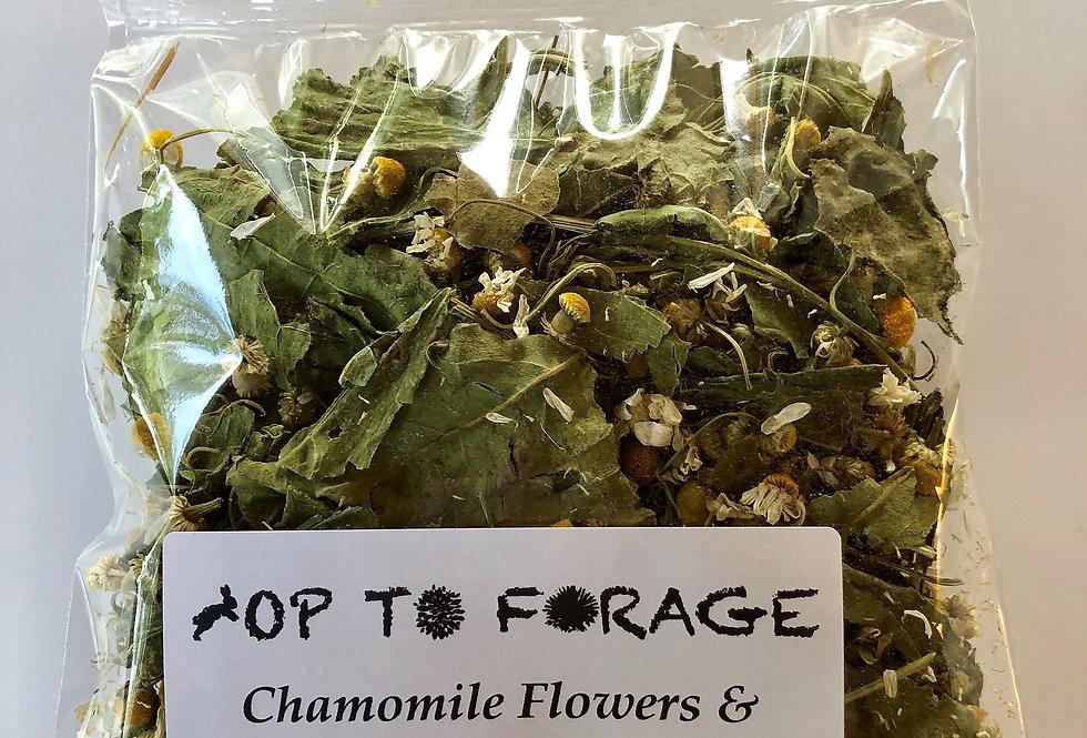 Chamomile Flowers & Echinacea Leaf (25g)