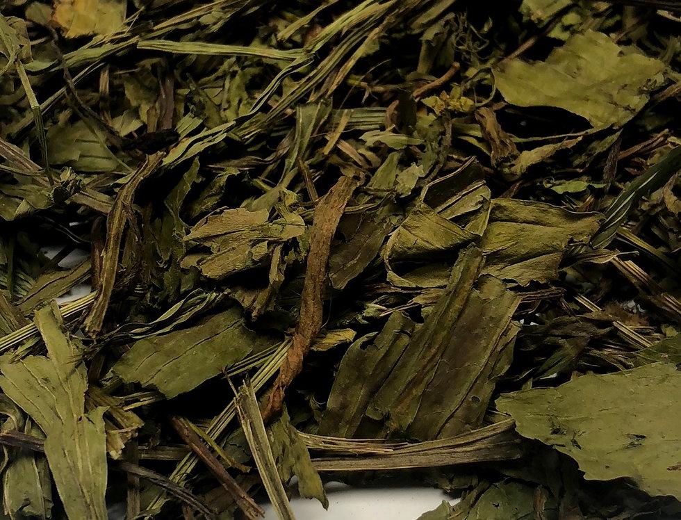 Ribwort Plantain (100g)