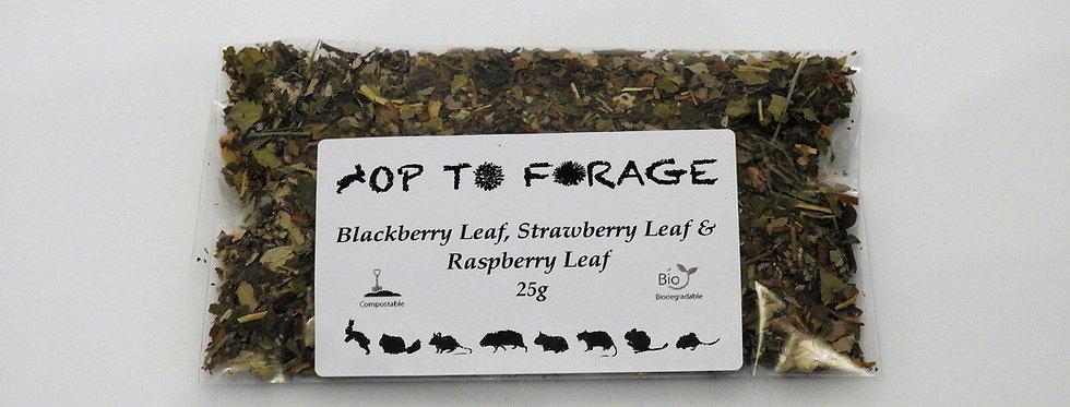 Blackberry Leaf, Strawberry Leaf & Raspberry Leaf (25g)