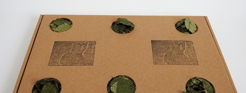 Leafy Green Dig Around Forage Box
