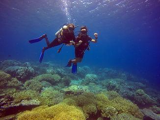 Divers Underwater 2.JPG