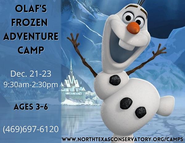 Olaf's Frozen Adventure.png