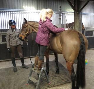 Sponsored Rider Olympic Build-Up - Marlborough Times