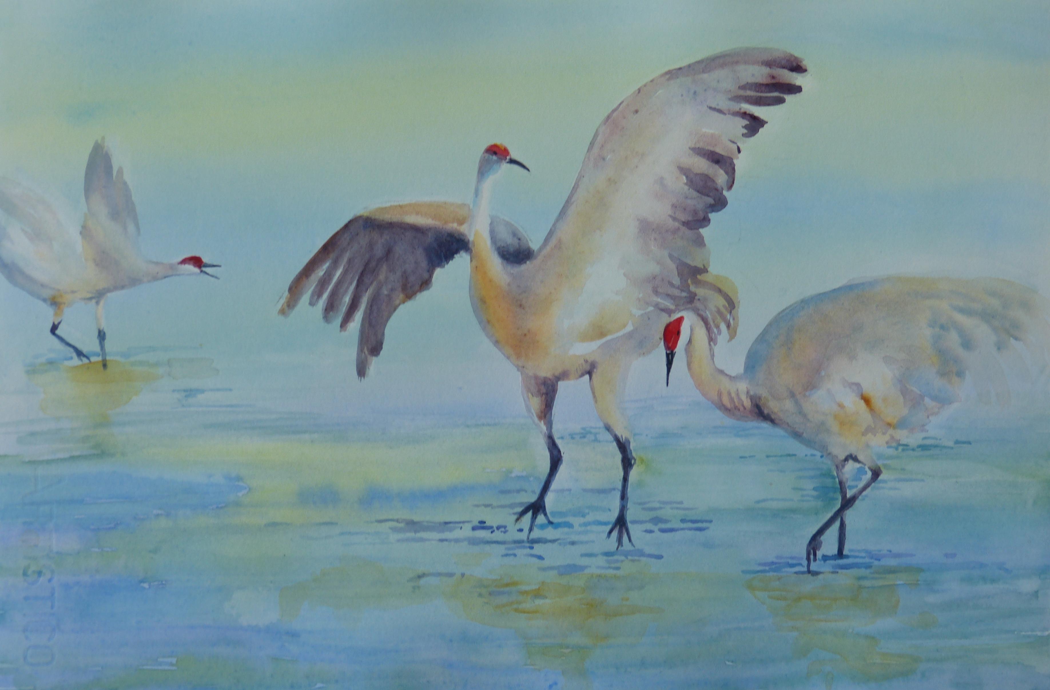 """""""Dancing Cranes"""""""