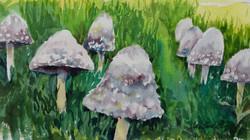 """""""Mushroom Parade"""""""