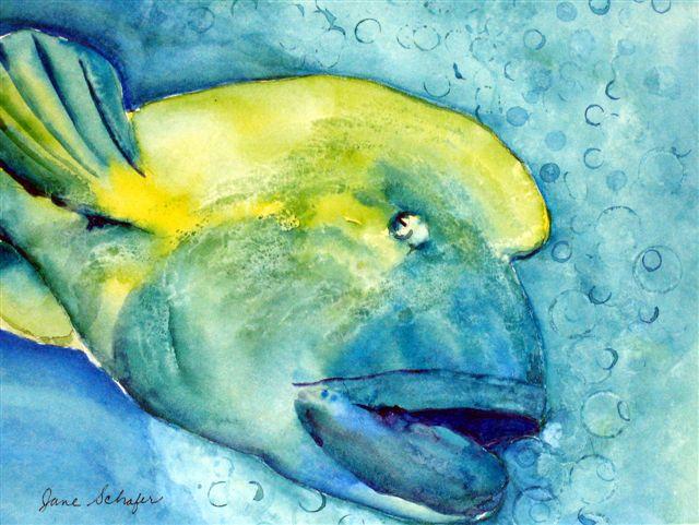 """Bubble Fish"""