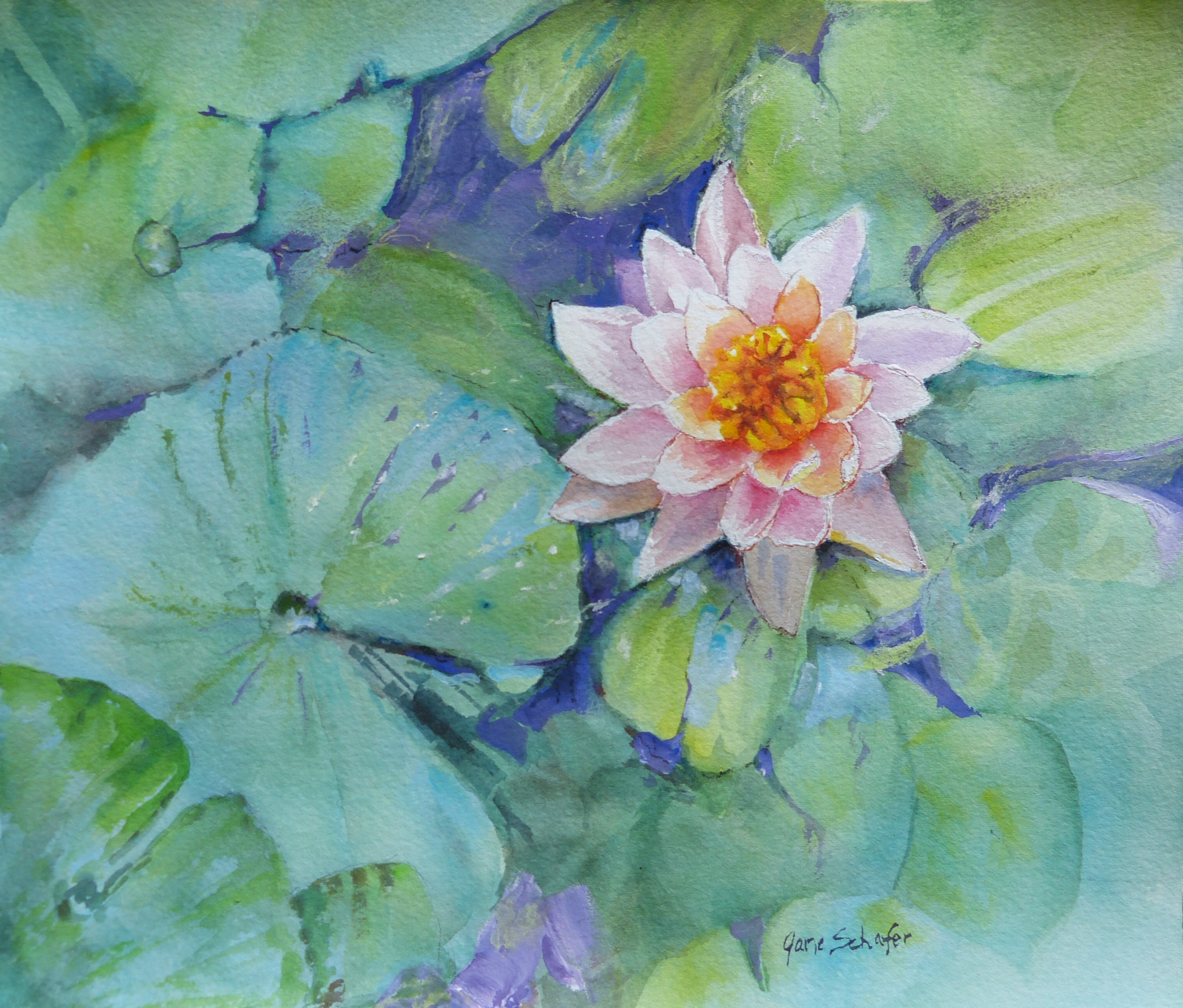 """Jewel of the Pond"""