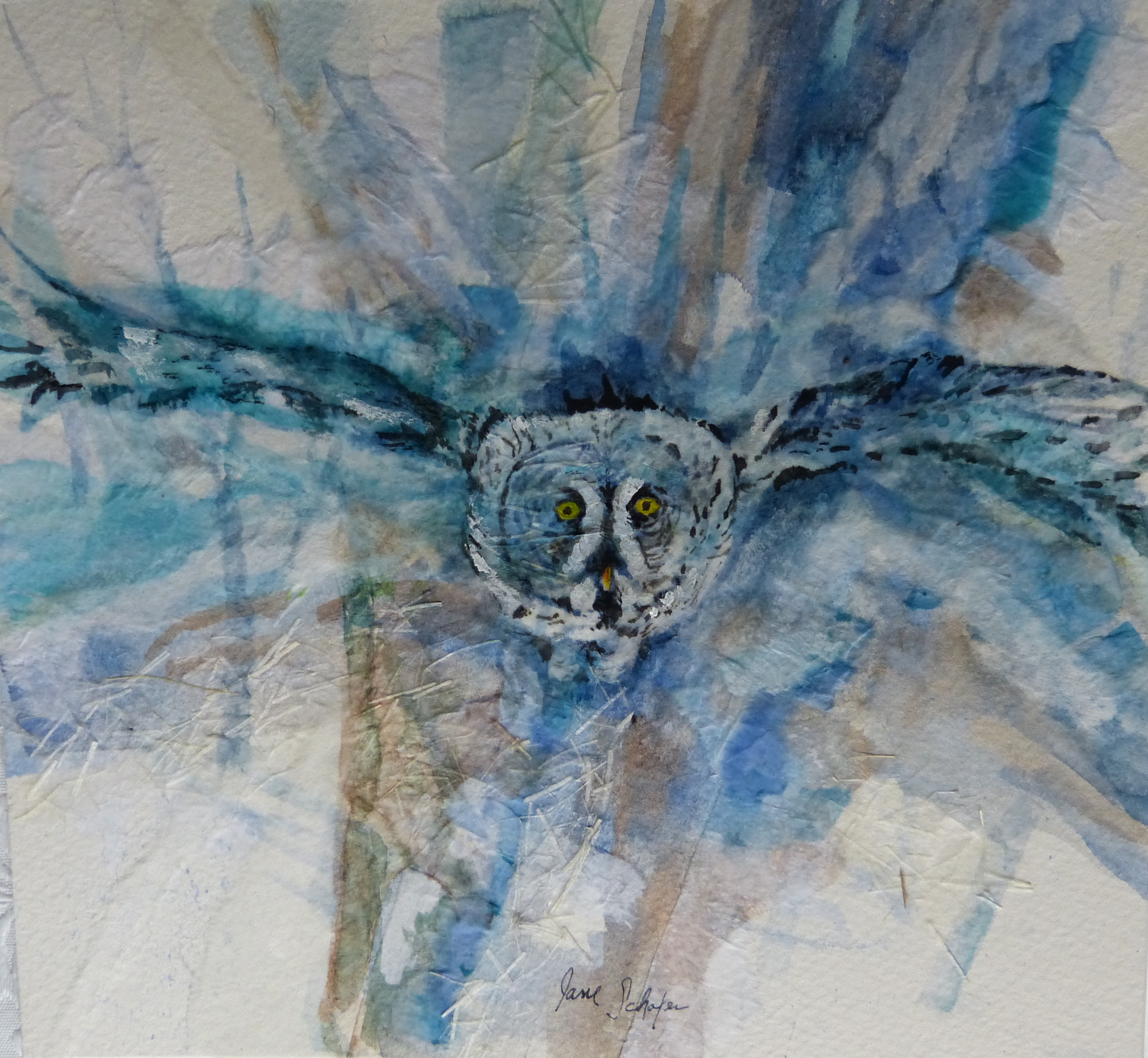 """Flying Owl"""
