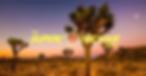 Screen Shot 2020-07-20 at 1.44.48 pm.png