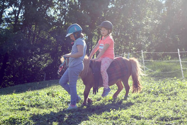 Pony Sissi