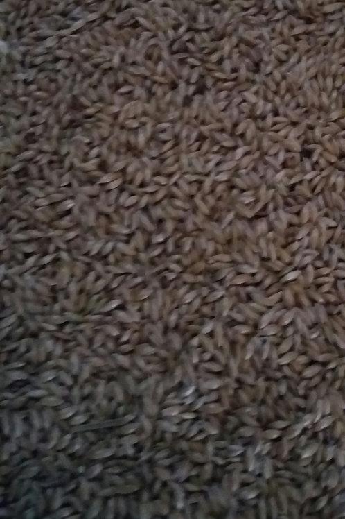Plain canary seed - 20kg