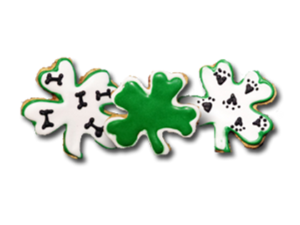 LITTLE SHAMROCKS