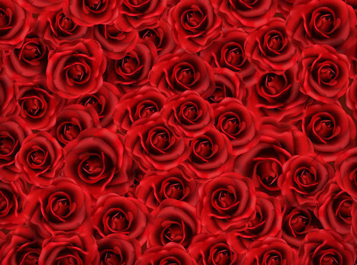 Red_Roses_Background-2138194402.jpg