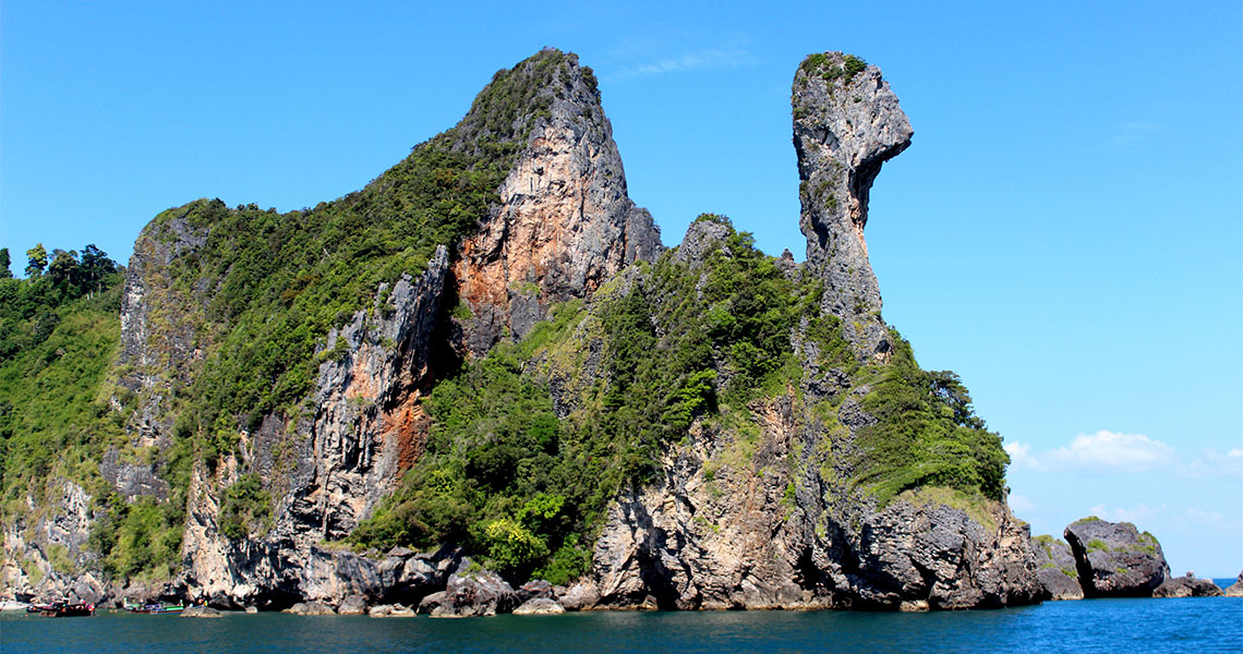 เกาะไก่1