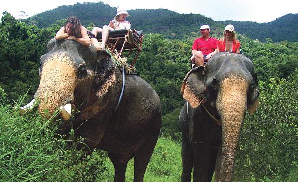 นั่งช้าง3