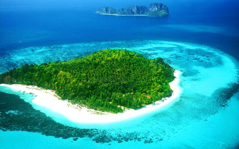 เกาะไผ่1