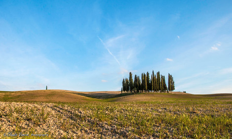 Val d'Orcia - Italy