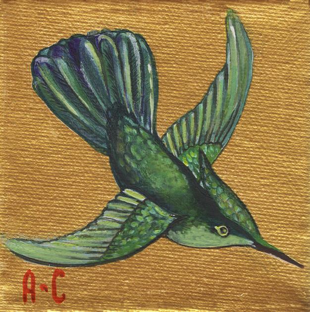 emerald_hummingbird.jpg