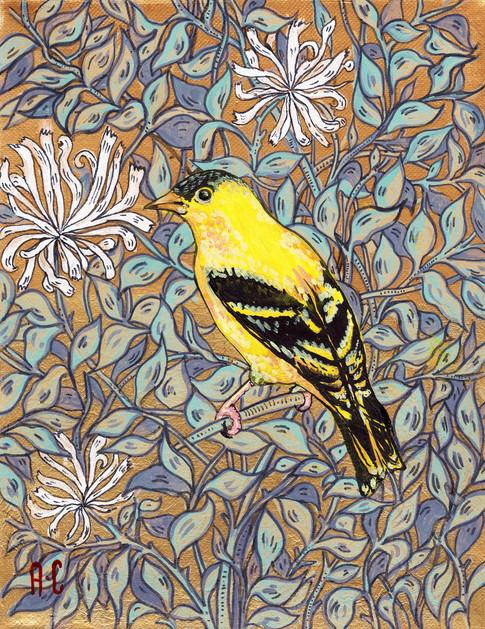 yellow-goldfinch.jpg