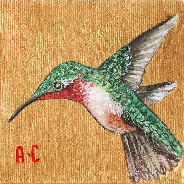 ruby_hummingbird.jpg