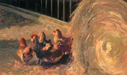 Stevens Farm Chickens lo-res
