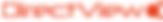 DirectView logo_small.png