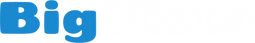 logo_bigvista_long white small.png
