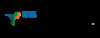 YP Logo Renk.png