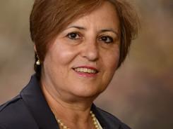 Hulya Kirkici