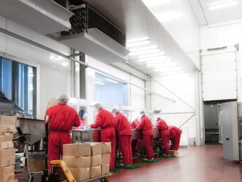 O tratamento de resíduos das indústrias alimentícias beneficia o meio ambiente. Veja como!