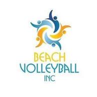 Beach Volleyball INC
