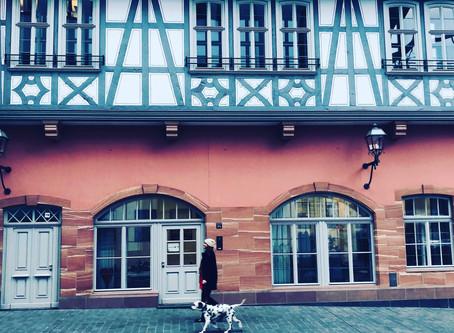Francfort - ALLEMAGNE : que faire & voir ? Une journée dans la 5 ème ville, entre secrets et spots !