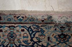 Carpet-case-moth carpet damage